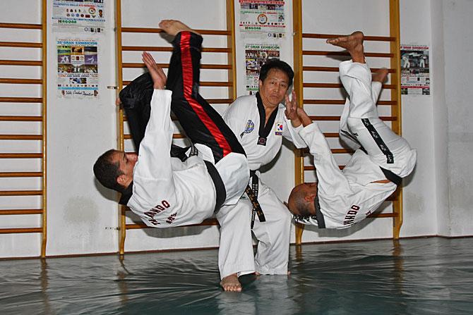 grossmeister bang hapkido techniken